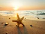 Playa en un día de verano