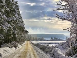 Carretera en un paraje cubierto de nieve