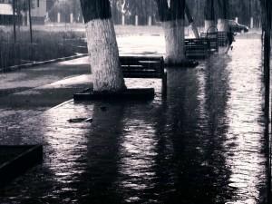 Lluvia en el parque