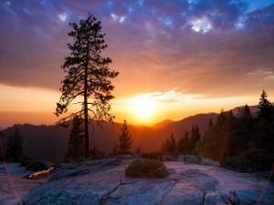 Sol iluminando las rocas al amanecer