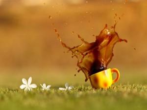 Taza de café derramada sobre la hierba