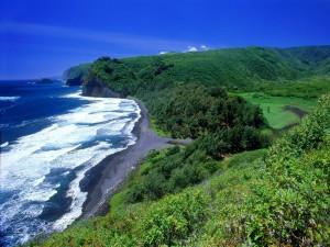 Pequeña playa en una zona verde
