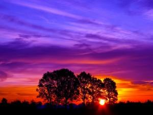 Bonitos colores en el cielo al amanecer