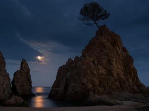 Noche de luna llena en el mar