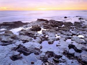 Agua estancada entre las rocas