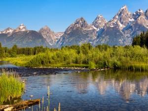 Río en el Parque Nacional Gran Teton