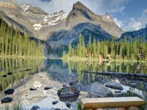 Banco en la orilla del lago para contemplar el bello paisaje