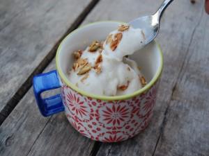 Rico helado con semillas