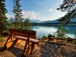 Banco para contemplar el lago