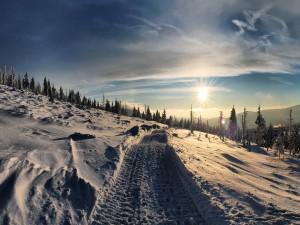Sol brillando en la nieve