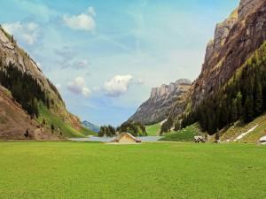 Cabañas en el valle