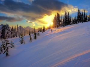 Amanece sobre una colina nevada