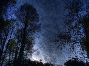 Pequeñas nubes en el cielo al amanecer