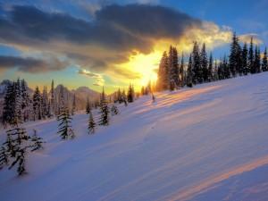 Nieve en la ladera de la montaña