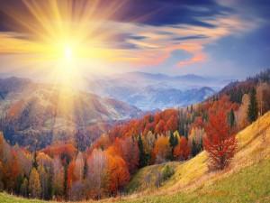 Sol brillando con fuerza en un día de otoño
