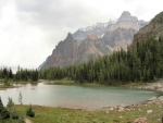 Pinos entre las montañas y el lago