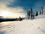 Día soleado en un lugar cubierto de nieve