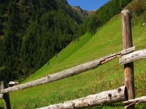 Valla de madera en una colina verde