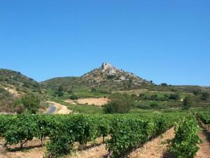 Viñedo al pie del castillo de Aguilar (Francia)