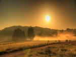 Niebla a la salida del sol