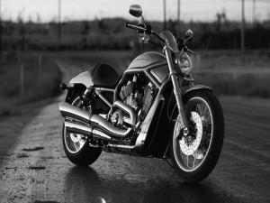 Harley-Davidson en una carretera