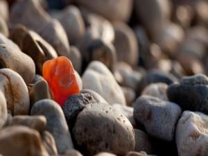 Una piedra naranja entre las piedras