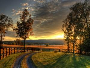 Sol iluminando los campos de cultivo