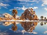 Paisaje nevado reflejado en un lago