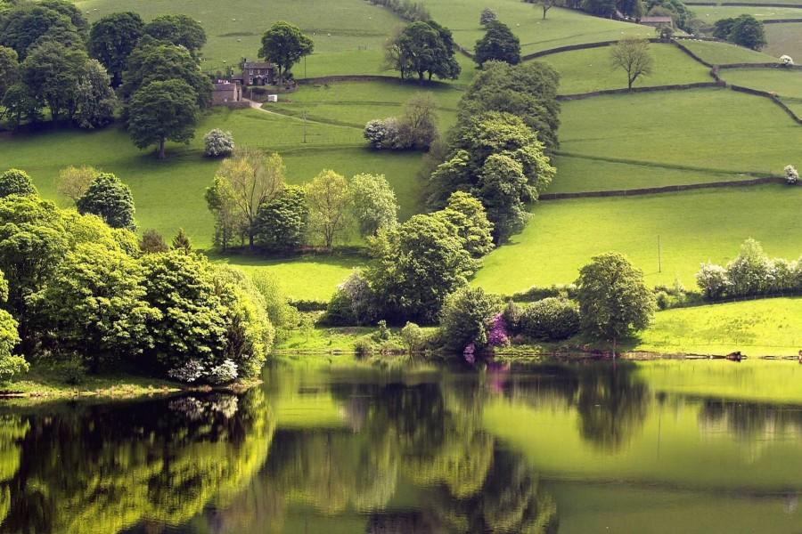 Casa en un bonito campo