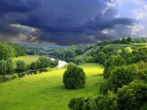 Río fluyendo por un paraje verde