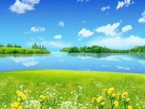 Flores junto al agua