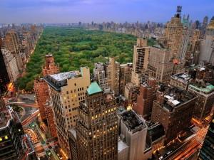 Impresionante vista de Central Park (Nueva York)
