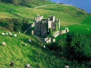 Ovejas pastando junto a un bonito castillo