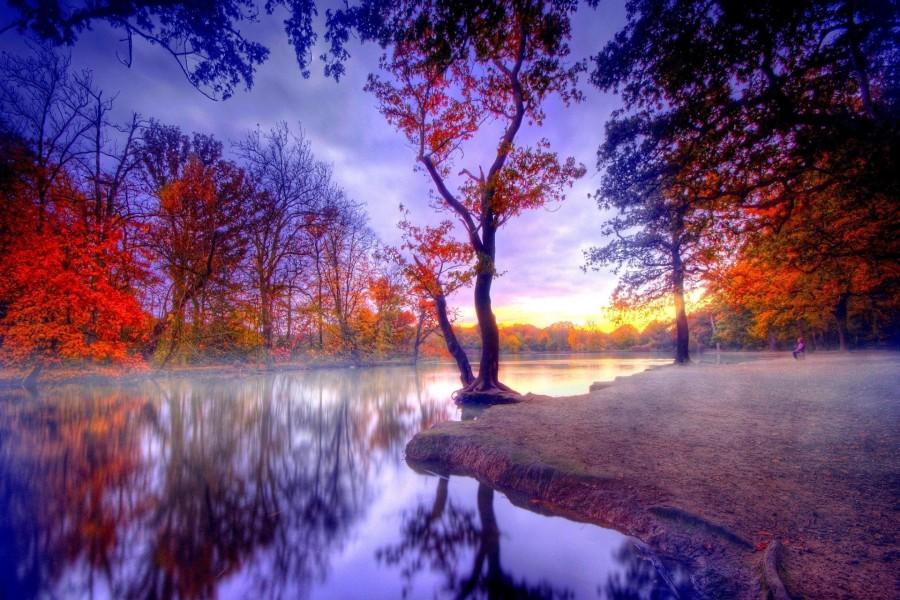 Contemplando el río en otoño