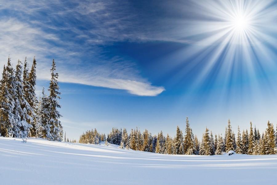 Resplandeciente sol brillando el la nieve
