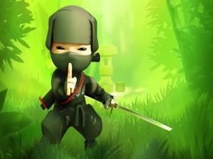Soy un ninja