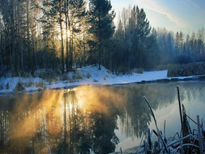 Sol reflejado en invierno
