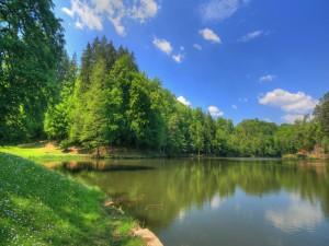 Bonito lago en primavera