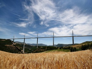 Gran puente visto desde el trigal