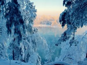Hermoso paisaje nevado junto al lago