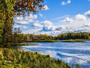 Bonito día en el río