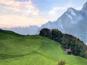Cabaña en el prado verde