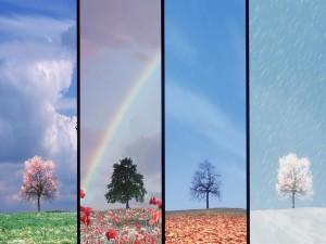 Las cuatro estaciones (primavera, verano, otoño e invierno)