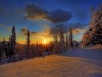 Bonito amanecer en la nieve