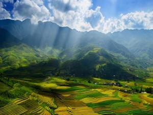 Rayos de sol sobre los campos de cultivo