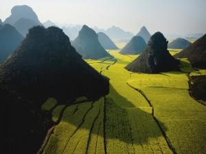 Montañas en un campo verde