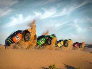 Unos Mini Cooper de rally en el desierto