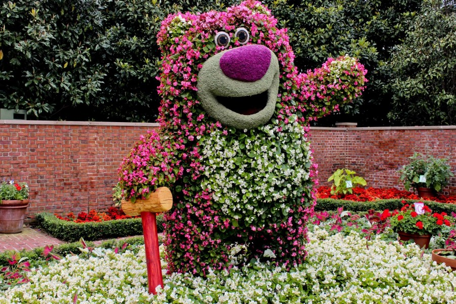 Imagenes De Jardines Con Flores: Curioso Oso En Un Jardín Con Flores Blancas Y Rosas (67191