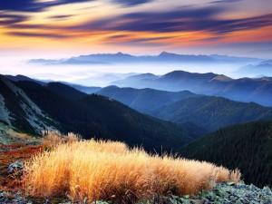 Bruma sobre las montañas