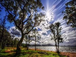 Radiante sol brillando en el cielo